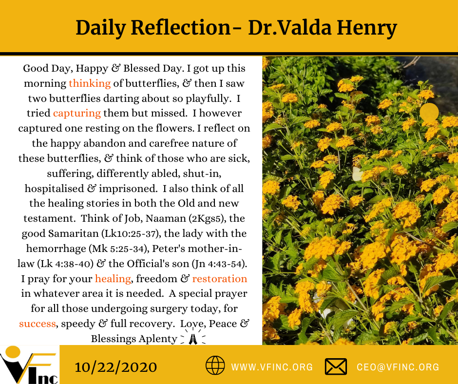VFINC DAILY RELFECTION (14)
