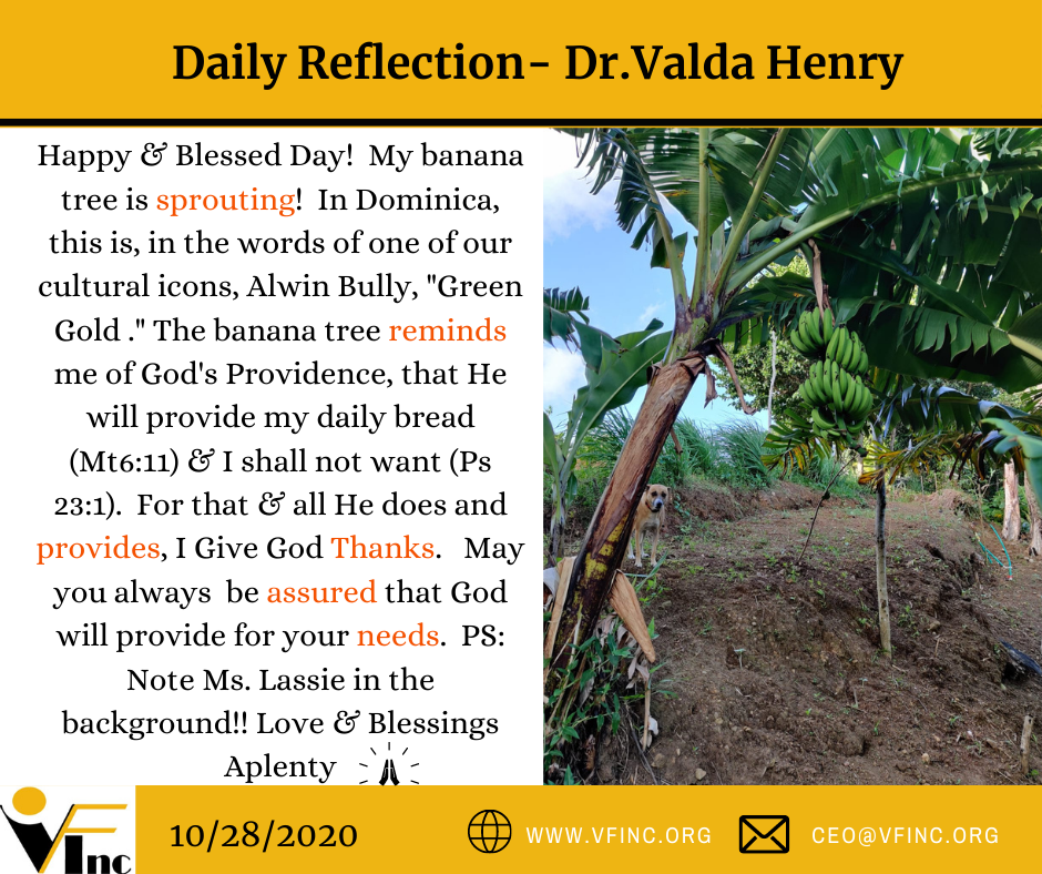 VFINC DAILY RELFECTION (21)