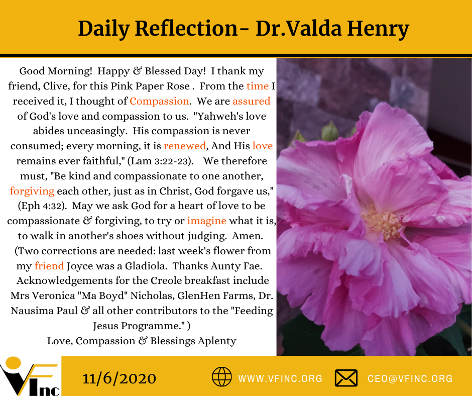 VFINC DAILY RELFECTION (29)