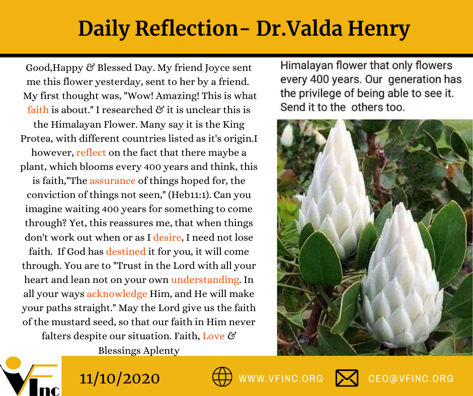 VFINC DAILY RELFECTION (31)