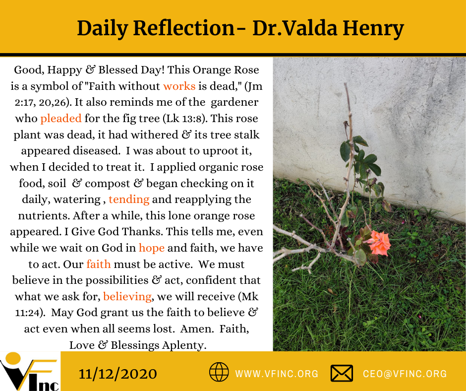 VFINC DAILY RELFECTION (33)