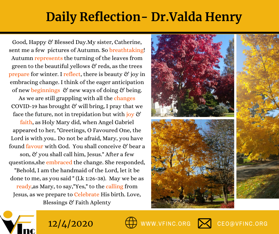 VFINC DAILY RELFECTION (60)