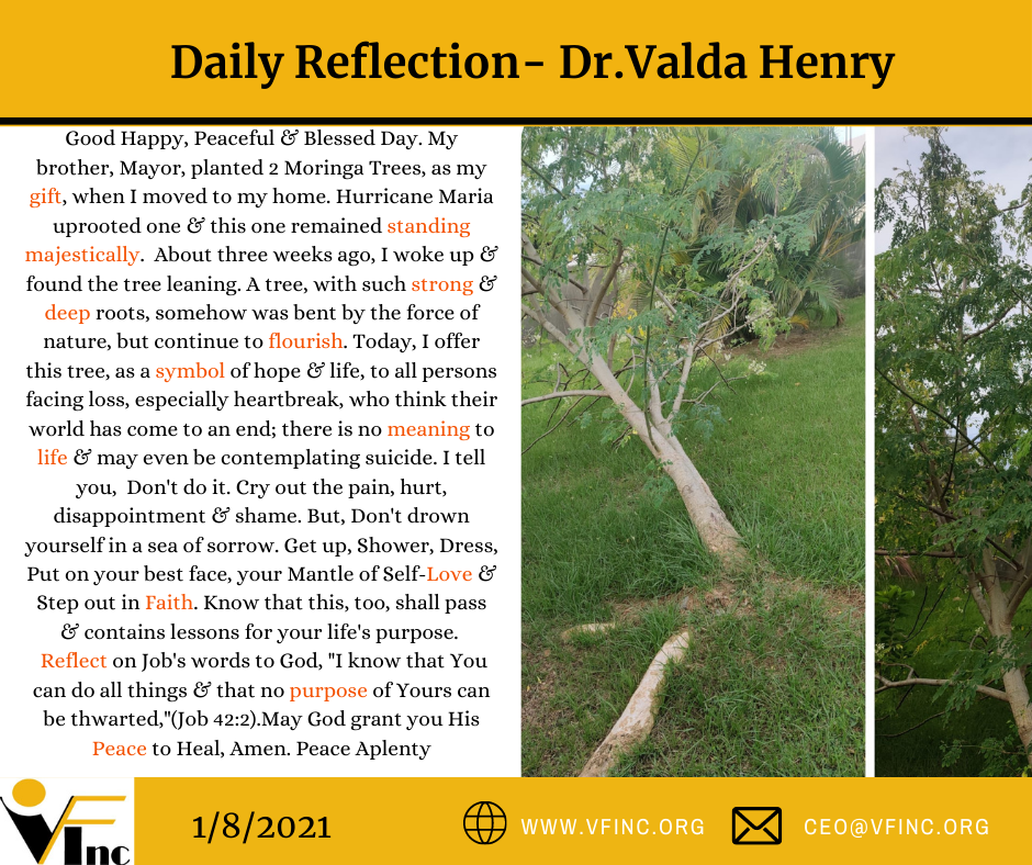 VFINC DAILY RELFECTIONS (10)