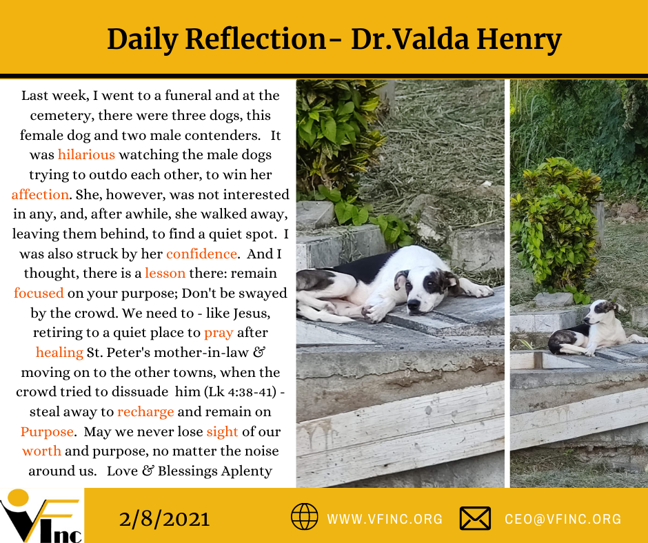 VFINC DAILY RELFECTIONS (17)